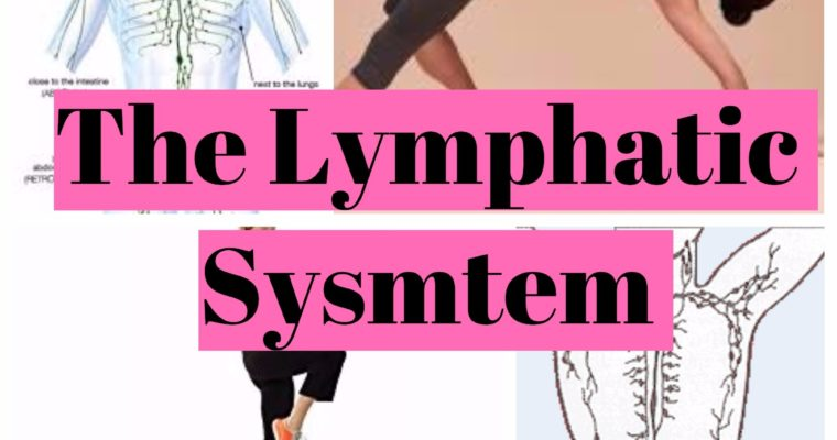Lymphatic system – How to get the most out of your built-in waste disposal