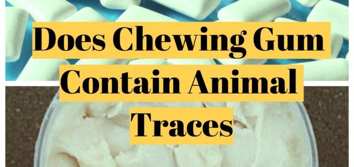 Chewing Gum Ingredients Pig
