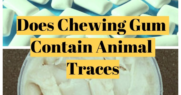 Some chewing gum contains pig traces. Learn the difference – Healthead